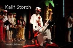 Musical-Kalif-Storch-00
